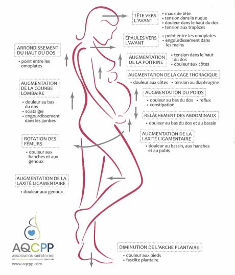 femmes-enceintes-chiropratique.png